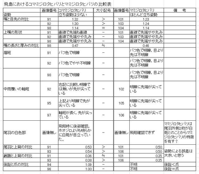 Mamijirotokomamihikakuitiran1